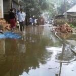 জলাবদ্ধতা: পৌরসভার ১ নং ওয়ার্ডের প্রধান যন্ত্রণা