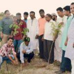 নবাবগঞ্জে চেতনায়-'৭১ উদ্যোগে বৃক্ষরোপণ