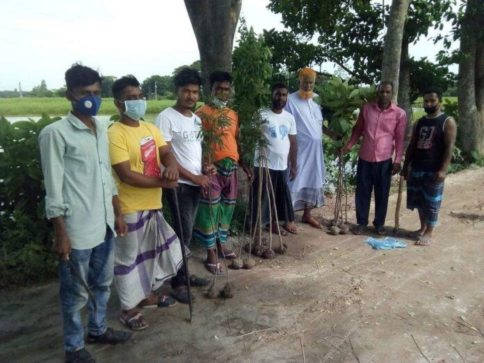 দোহারের মাহমুদপুর ইউনিয়নে গ্রীন বাংলার বৃক্ষ রোপন